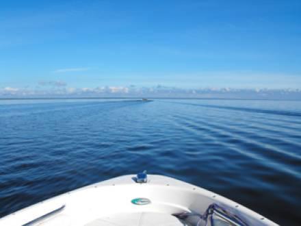 Buffalo Bay Marina