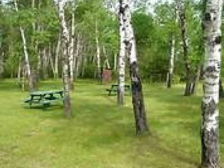 Interlake Forest Center - Wayside Park Campground