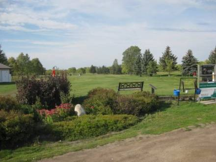 MacGregor Town & Country Golf Club