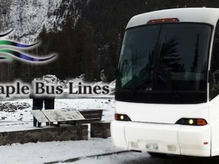 Maple Bus Lines