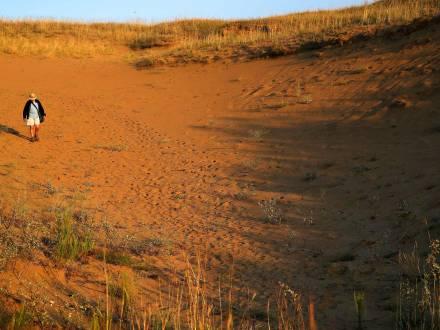Walking in the dunes at Western Spirit Sands