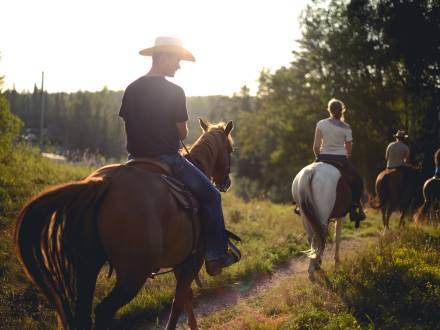 Horseback riding through boreal forest trails